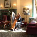 Peaceful harp music entertainment in assistive living community.